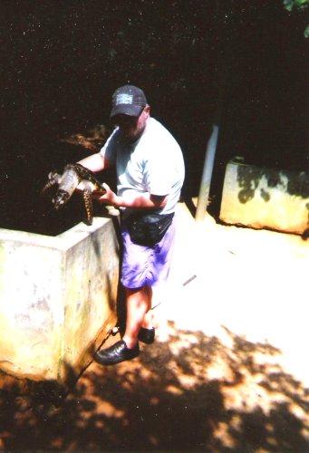 Holding a baby turtle, Kosgoda Turtle Hatchery