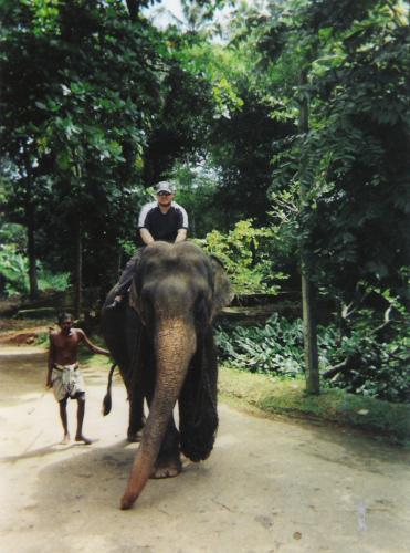 Pinnawala Elephant Sanctuary.