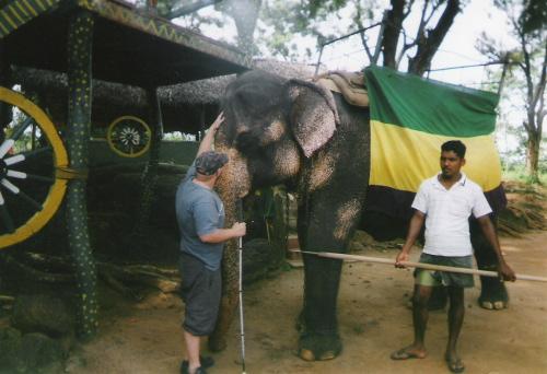 Tony getting acquainted with an elephant, Habarana Elephant Ride, December