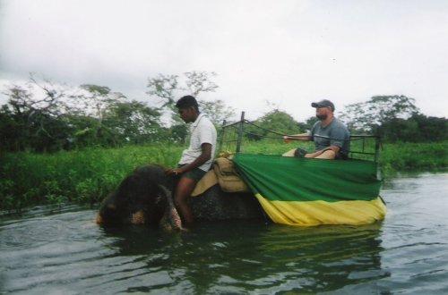 Tony with guide riding an elephant in the river, Habarana Elephant Ride