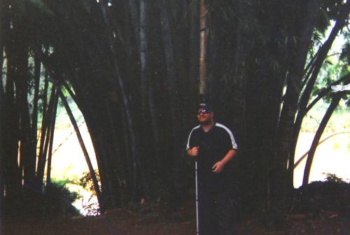 Tony stood by a large bamboo tree, Peradeniya Botanical Gardens, Kandy