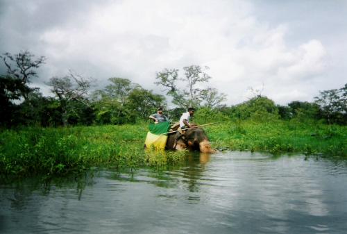 Tony with a guide entering the river, Habarana Elephant Ride