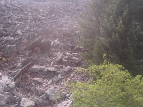 Steep slope with boulders and loose rock.