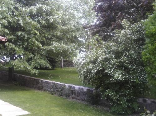 Garden of Vodoca Monastery.