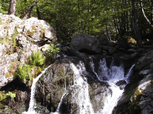 Small waterfall on the Dragus river.