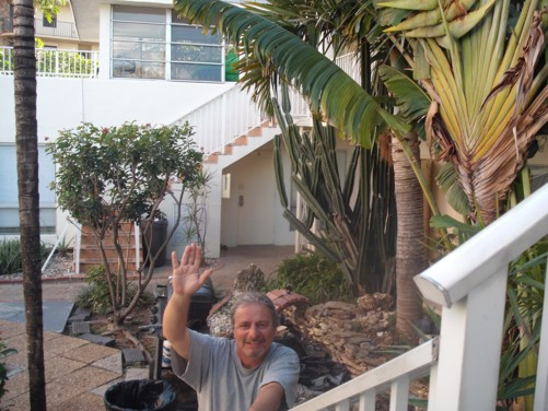 Courtyard garden of the Beach Hostel, Fort Lauderdale, Florida USA. 8th January.