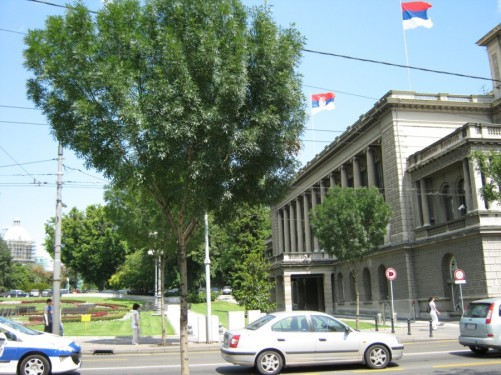 The Old Palace. It was built between 1882 and 1884. Today it houses the City Assembly of Belgrade.