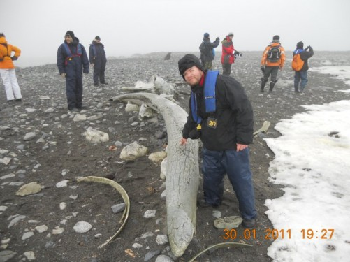 Tony touching a long and large whale bone, it is quite old and weathered.