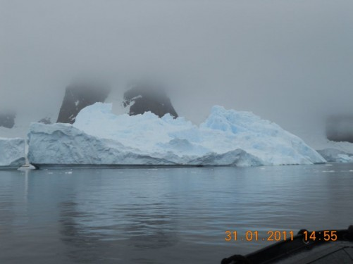 An iceberg floating near the cliffs of Danco Island.