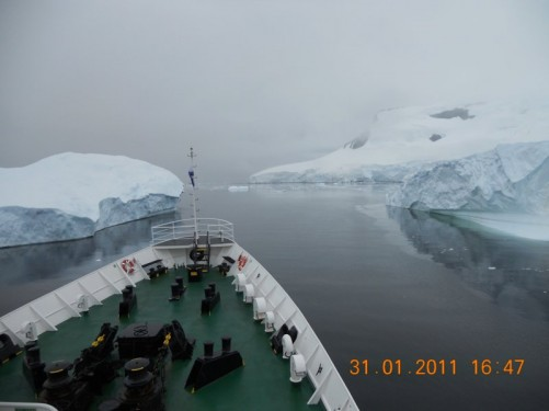 View from the stern of the ship - iceburgs approaching.