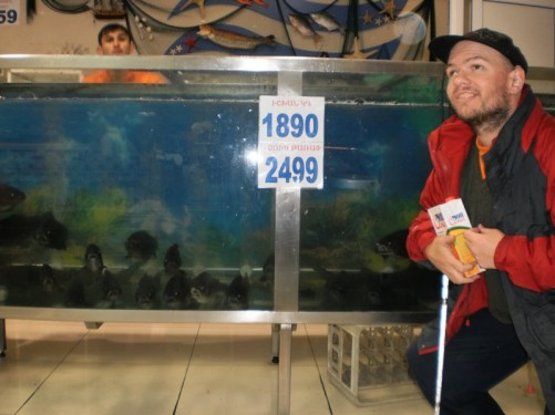 Tony by a tank of fish in a supermarket, taken in the evening in central Yerevan.