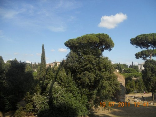 More Roman ruins in the distance, Palatine Hill.