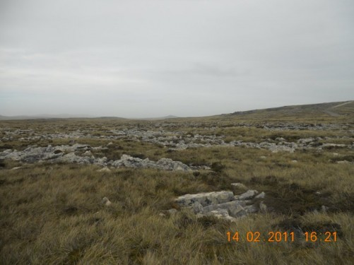 View of the barren landscape, a mixture of grass and rock off into the distance.