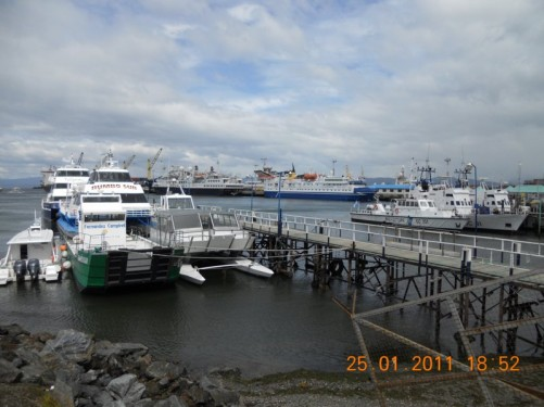 Boats and ships, including cruise ships and cargo vessels in Ushuaia Harbour.
