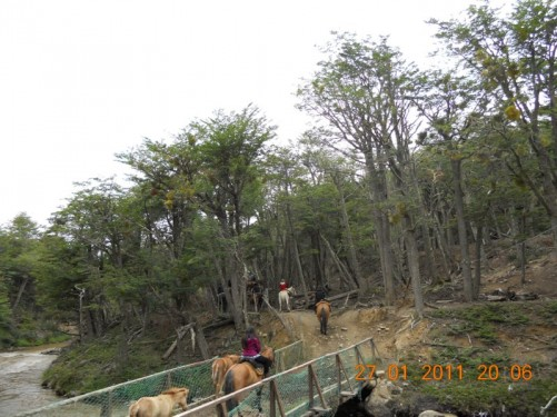 Horses and riders crossing a wooden bridge over a stream.
