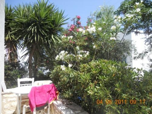 Young Inn patio garden.
