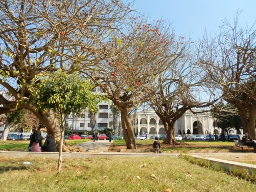 View across a public park, located near As Sounna Mosque.