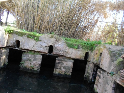 Roman remains flooded with water, possibly the remains of a cistern.