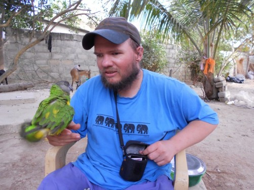 A parrot sitting on Tony's hand.