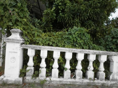 Some old-looking stone railings with lush vegetation behind, located by a canal. The city is very low lying so a series of canals and drainage channels have been dug to remove excess water.