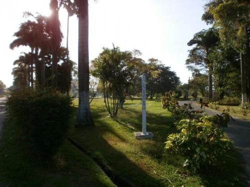 A path through the Botanical Gardens.