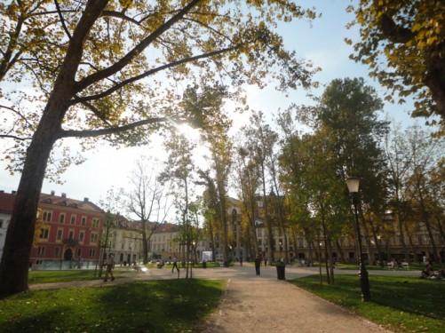 Leafy Congress Square (Kongresni trg).