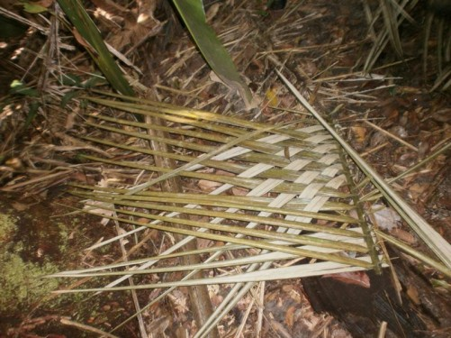 Palm fronds woven together for roofing.