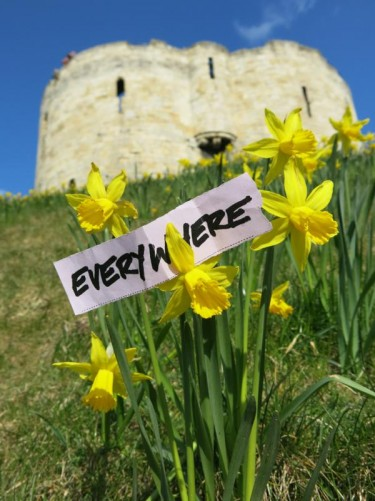 Daffodils with a paper note that reads 'Everywhere'. Clifford's Tower on top of the mound behind.