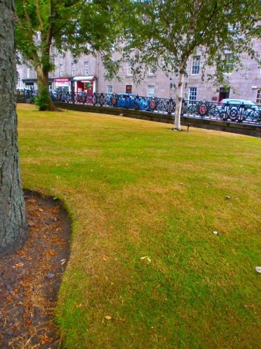 Union Terrace Gardens: a public park and gardens.