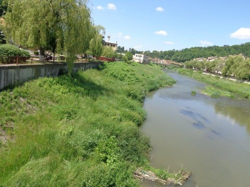 View along the Târnava Mare River with grassy banks at either side.