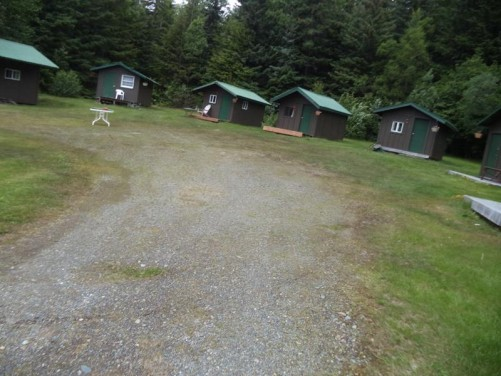 A row of small wooden cabins with thick conifer trees behind. Again at the Bear Creek Cabins. This place also has bunk beds for individual travellers and is 1 mile (1.6 km) from downtown Haines.