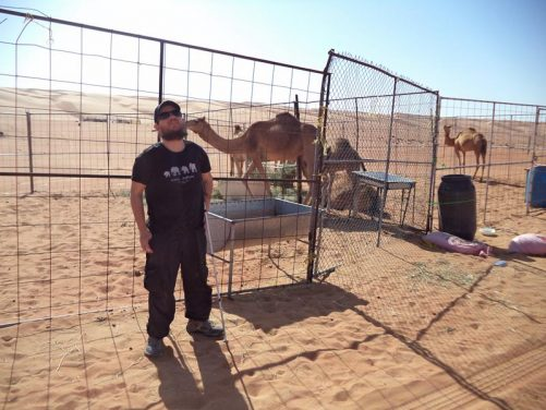 Camels inside an enclosure of metal fencing in the desert. Tony in front.