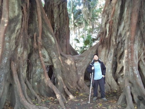 Tony at the foot of the enormous tree with its interestingly shaped aerial roots.
