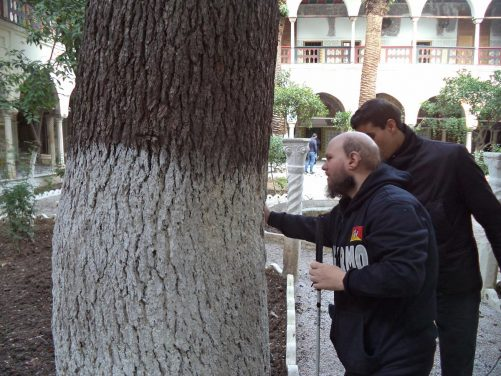 Tony touching the trunk of a mature tree in the palace's garden.