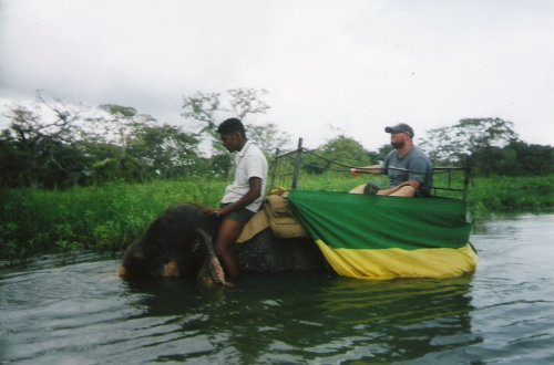 Tony with guide riding an elephant in the river, Habarana Elephant Ride