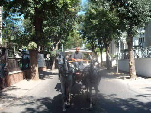 Horse and cart, Prince's Island, Istanbul