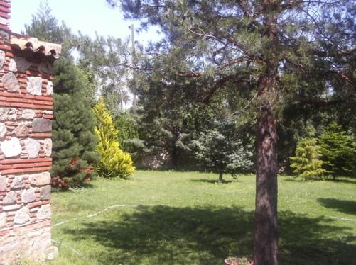 Garden of Veljusa Monastery.