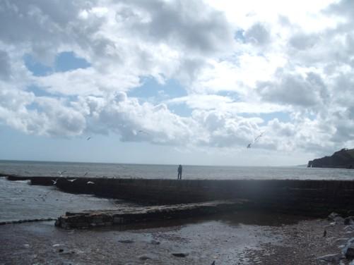 Seafront, Dawlish.