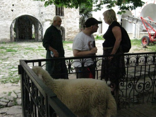 Tony and Anthea beside a sheep in the monastery grounds.