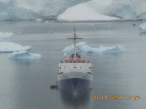 The MV Ushuaia anchored off Danco Island; icebergs visible behind.