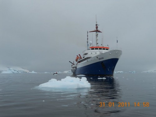 Approaching the MV Ushuaia.