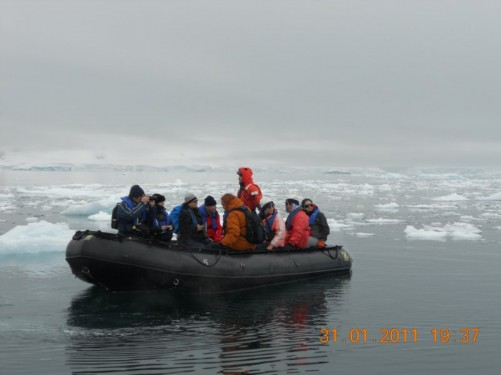 A group of passengers looking at the seals in another Zodiac boat.