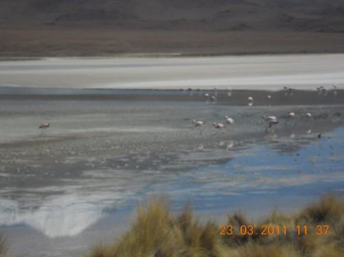 Laguna Ramaditas.