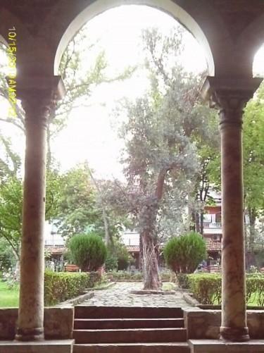 Church garden viewed through one of the church arches.