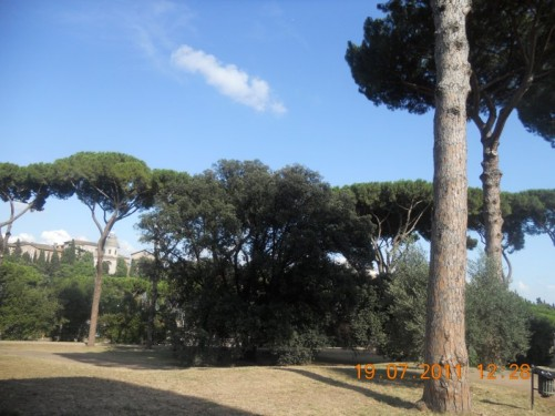 Park, part of Rome's ancient Palatine Hill.