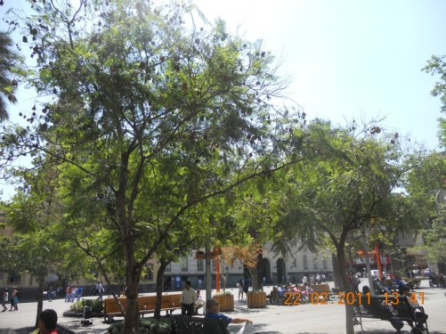 Another view of people in Plaza de Armas.