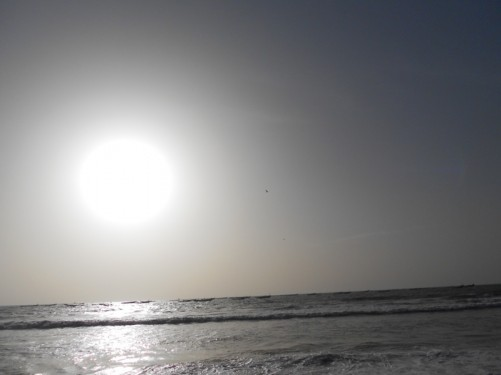 View of the sea at Nouakchott fish market. The sun low in the sky.