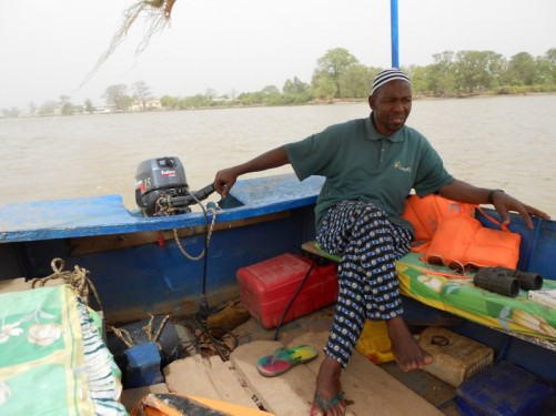 On the Gambia River in a traditionally designed river boat with a motor. Looking towards the Gambian boat owner and guide as he steers.
