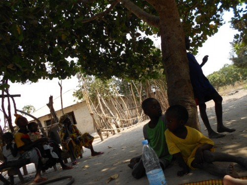 A group of women and children sitting under the shade of a tree.