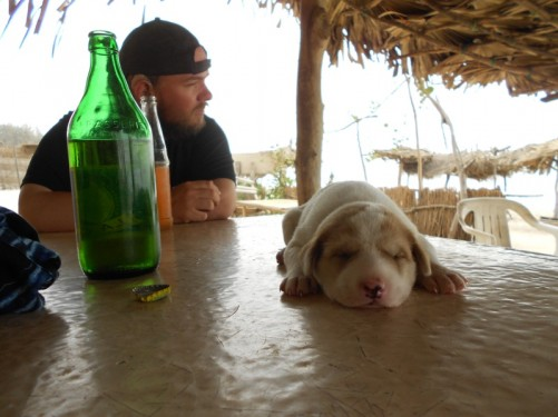 Tony sitting at a beach bar table on Abene beach with a drink. Simon and Khady's puppy, Toubab, is asleep on the table.